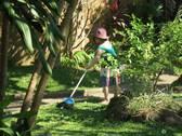Gartenarbeit mit Vera: den Rasen fegen