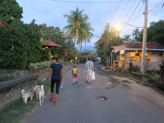 Mit den Hunden zum Strand gassi gehen