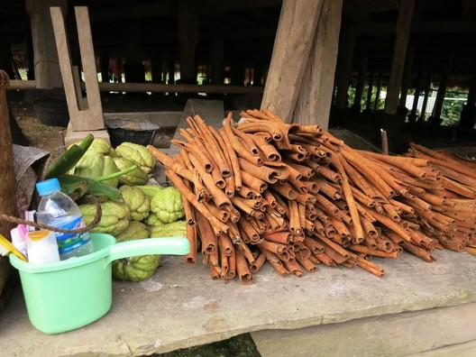 Vanille - die Baumrinde liegt getrocknet und gerollt zum Verkauf bereit