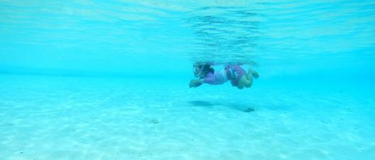 Das Meer ist Fionas neues Zuhause