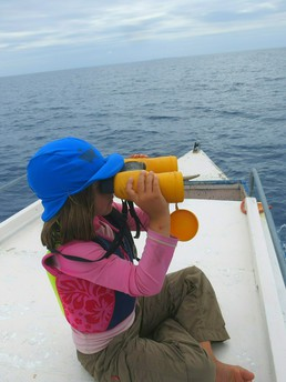 Fiona, unser 'Whale-spotter'