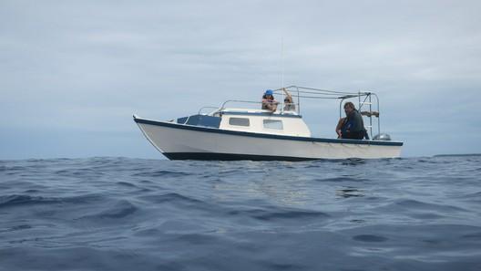 Das Boot ist etwa so lang wie ein halber Wal