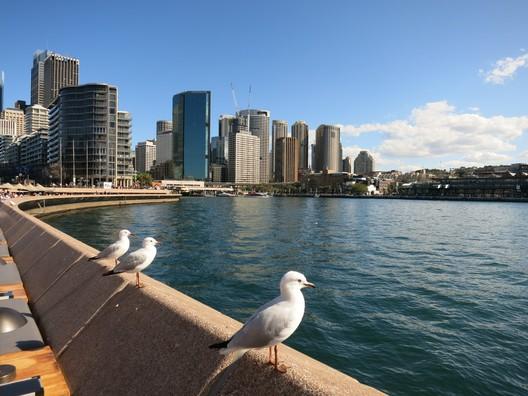Der Hafen von Sydney
